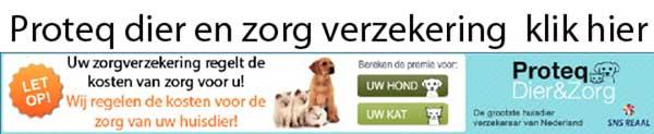 Verzeker het gebt van uw hond of kat